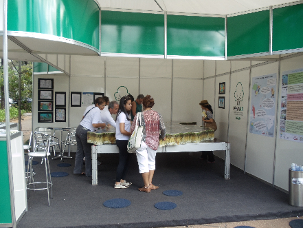 Festival Internacional Andando de Bem com a Vida