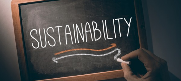 Hand writing the word sustainability on black chalkboard
